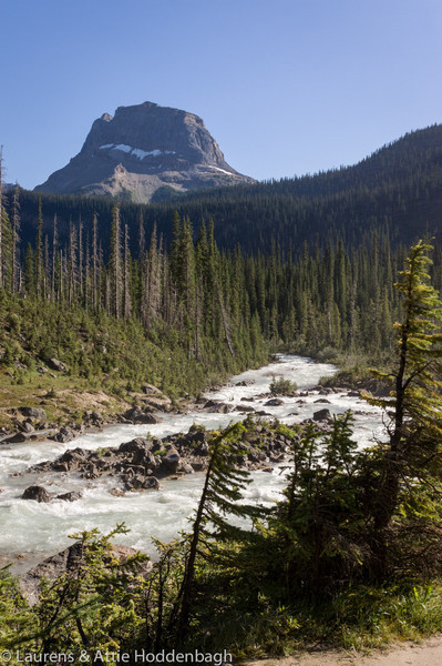 Yoho River near the Takkakaw Fall, Yoho National Park, BC, CA