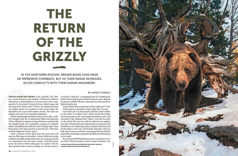 SIERRA-JF17-Grizzly-Feature-FINAL.jpg