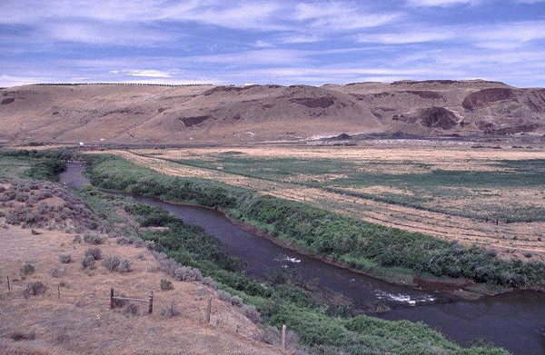 Nine Mile Ranch west of Walla Walla, WA. Riparian plantings for salmon habitat restoration. View downstream. June 17, 2002.