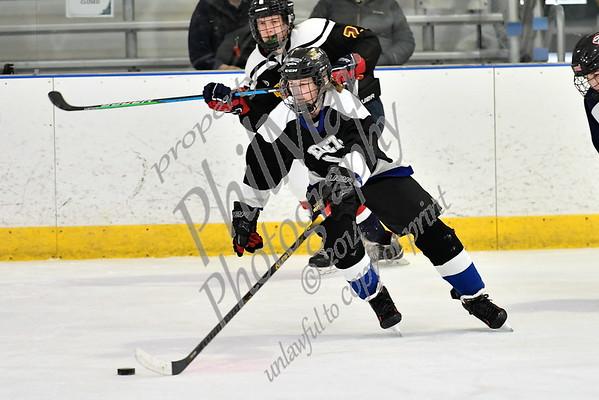Exeter/Mifflin vs Muhl/Oley/BW/ Wilson/DB Ice Hockey 20 - 21