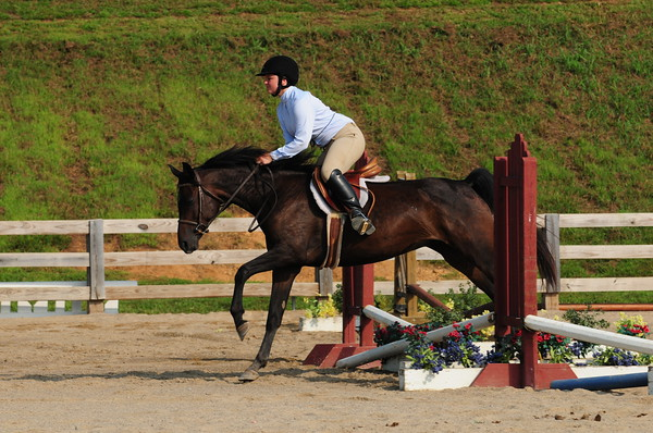 107-110-ALL Short-Long Stirrup OF