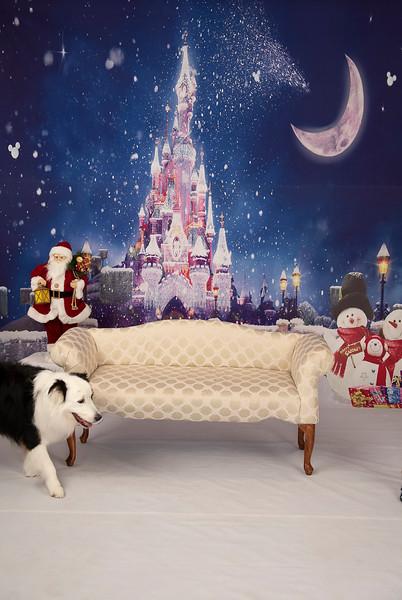 Christmas-2019_-132.JPG