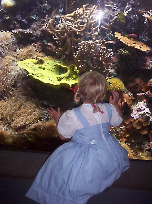 Rachel at aquarium 4.jpg