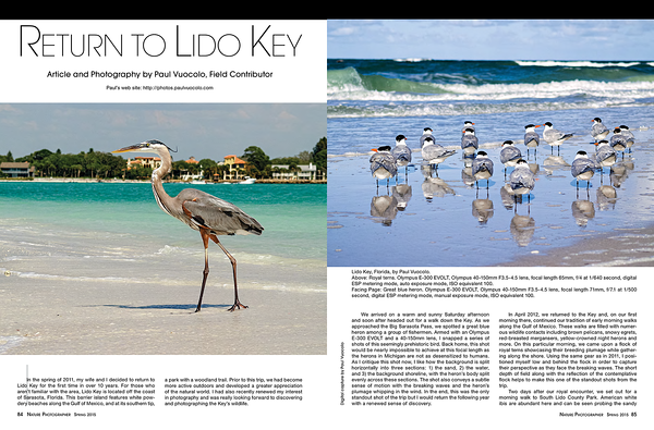"""Return to Lido Key"""