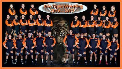 2016-2017 Erie Wrestling Team Banner