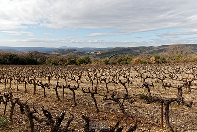 08-02-17 Chartreuse de Valbonne