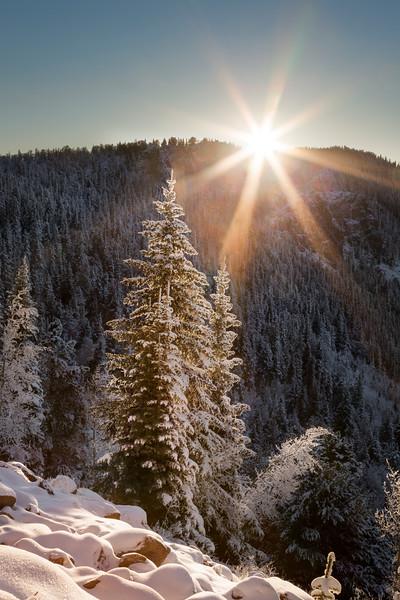 First Light, Last Snow
