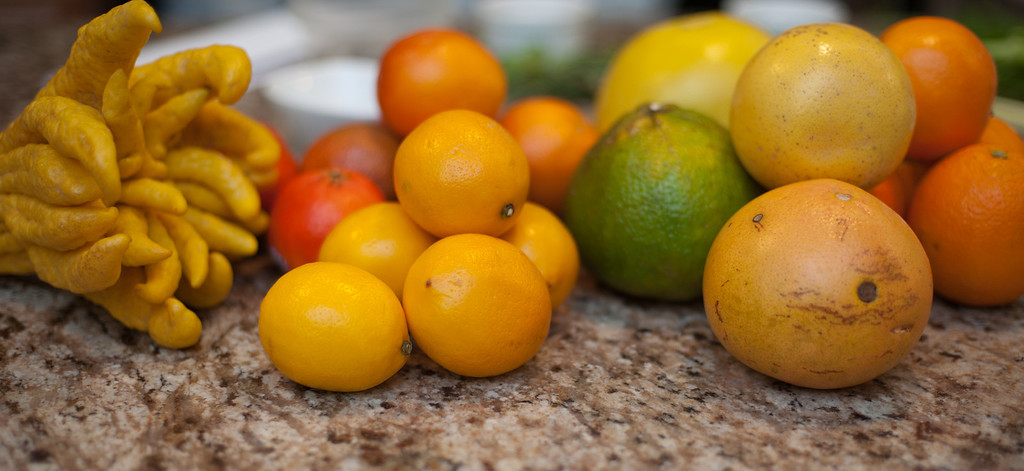 . Citrus fruit is currently in the height of season. (Sun photo by Holly Mahaffey/@hollymahaffey)