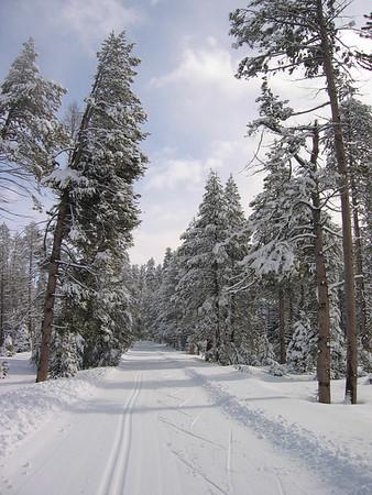 yosemite xc-skiing, feb 2005