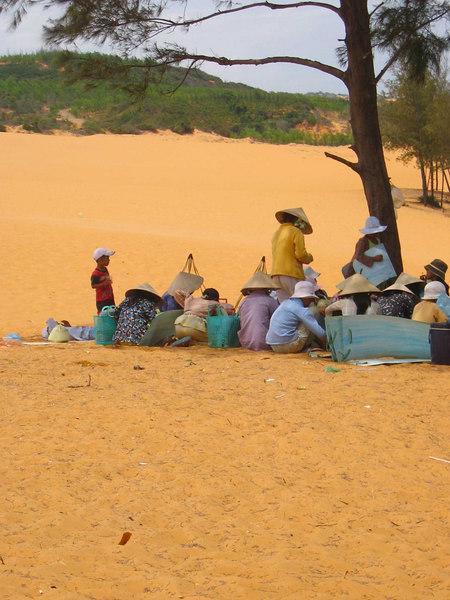 shade at the dunes
