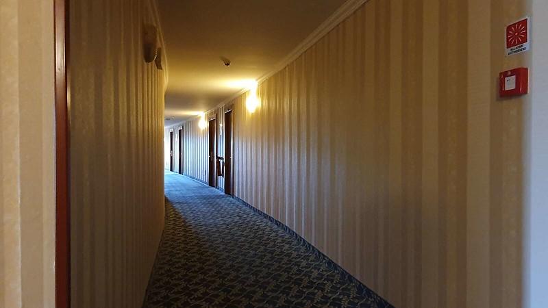 017 -  ROMA DOMUS HOTEL - INTERNAL CORRIDOR.jpg