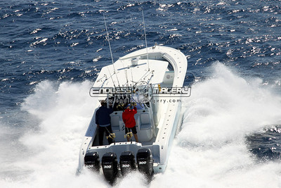 22 March 2010 - Yellowfin Bass To Billfish Offshore Shoot
