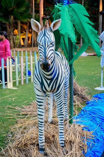 Safari World-3615.jpg