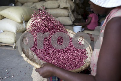 us-peanut-donation-to-haiti-might-hurt-more-than-it-helps