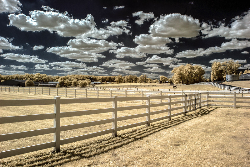 Del Val Farm -1.jpg