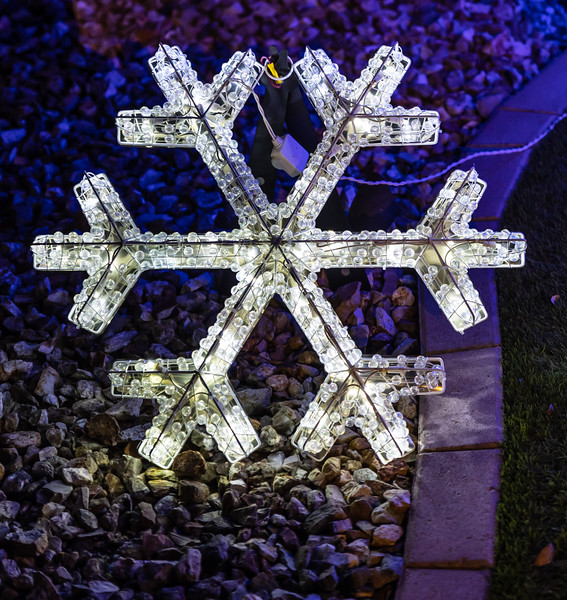 Christmas Lights in the Neighborhood  December 19, 2020  22_.jpg