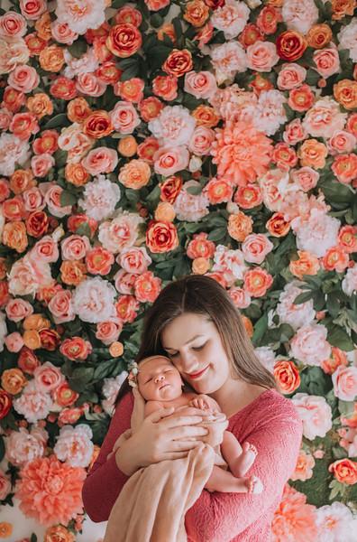 East-Bay-Family-Photographers_newborns-Katie (50).jpg