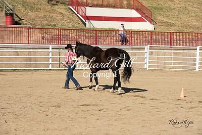 TN 25 Eliana Castillo