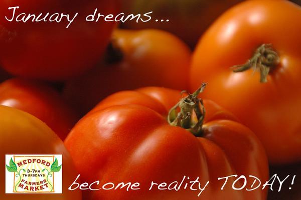 january dreams.jpg