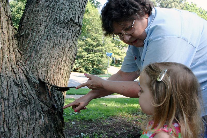 Grandma shows Christina an ugly slug hiding on the tree.