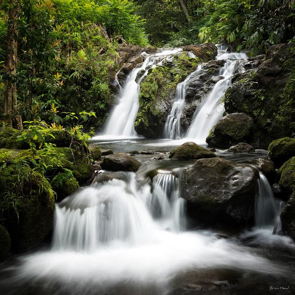 Hawaii Maui 2015-312-Edit-Edituntitled-sig.jpg