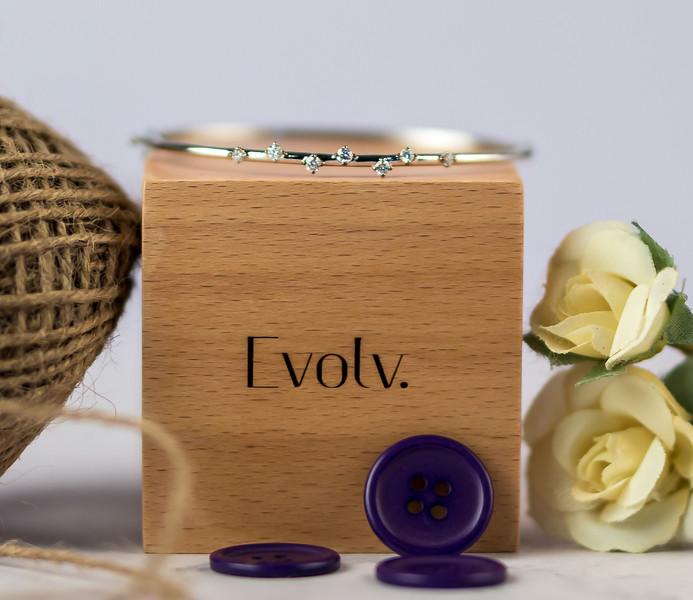 Evolv-8.jpg
