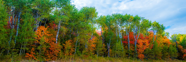 Fall Scenic Shots