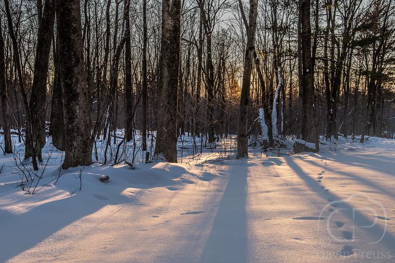 Hudson Valley-3618.jpg