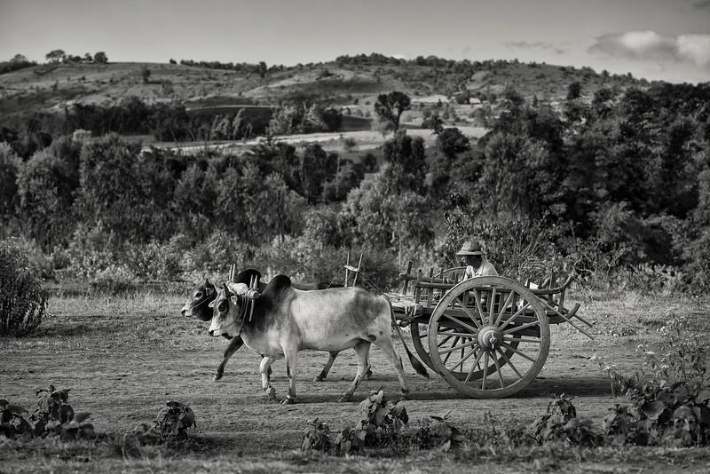 A rural scene.  Myanmar, 2017