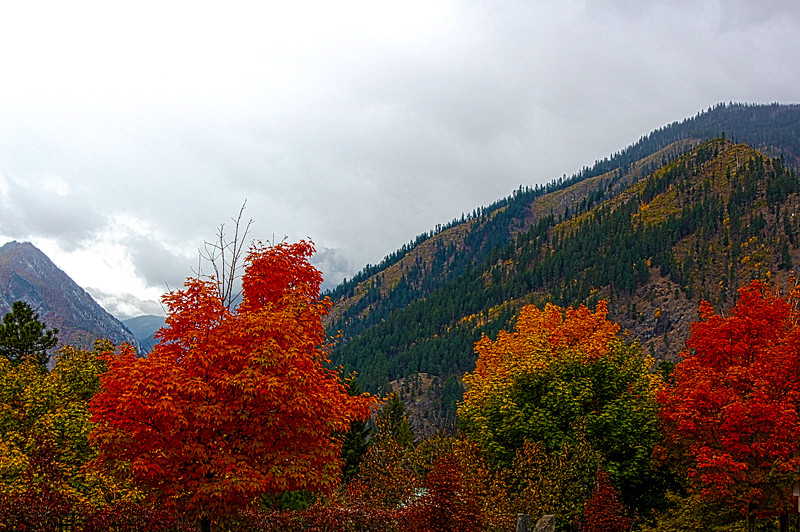 Fall_Scenery_HDR4.jpg