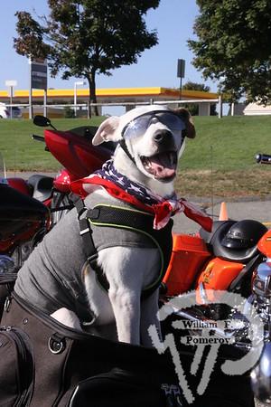 PATRIOT SQUARE — motorcycle run — Dennis, MA 9 . 27 - 2014