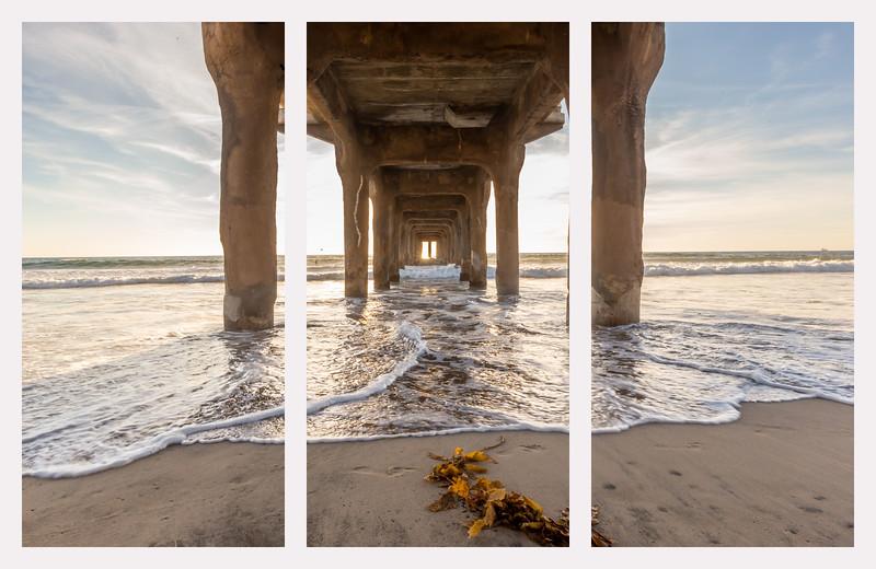 triptych under pier seaweed.jpg