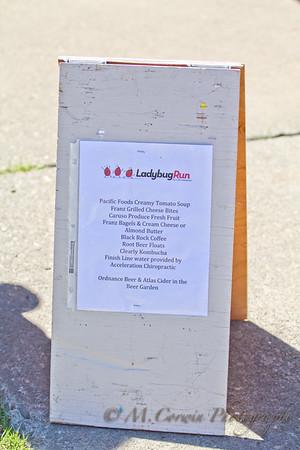 Ladybug Run for CDH Awareness 2017
