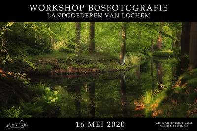 2020-05-16 Workshop bosfotografie (Dutch)