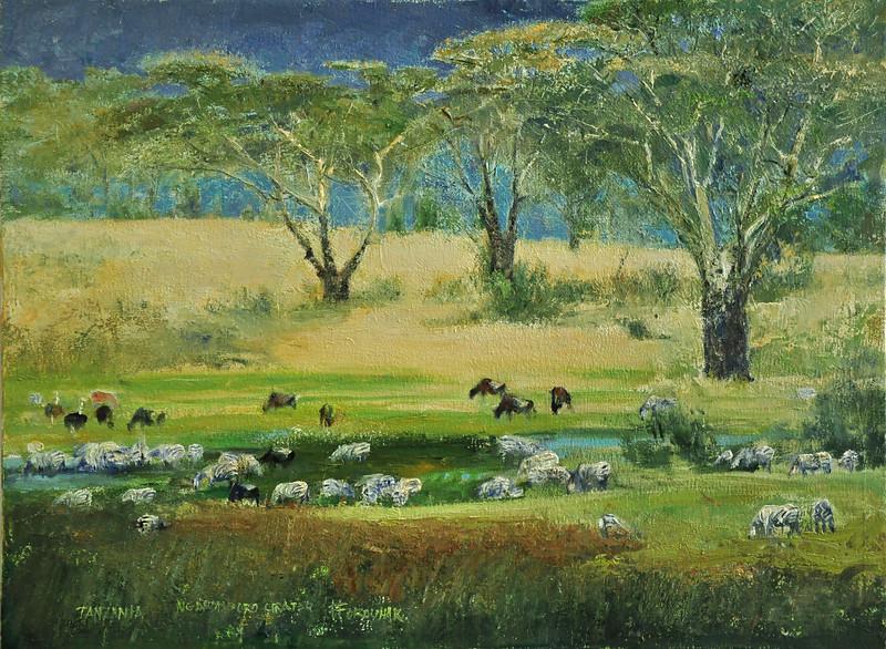 African Series;   ZEBRAS;   Gorongora Crater, Tanzania