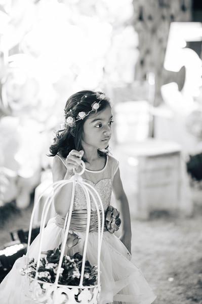 Raavi's Fifth Birthday D4-3371.jpg