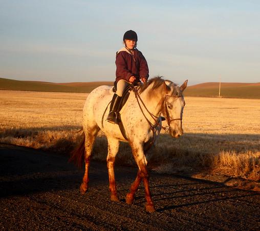 Caterina-Horses