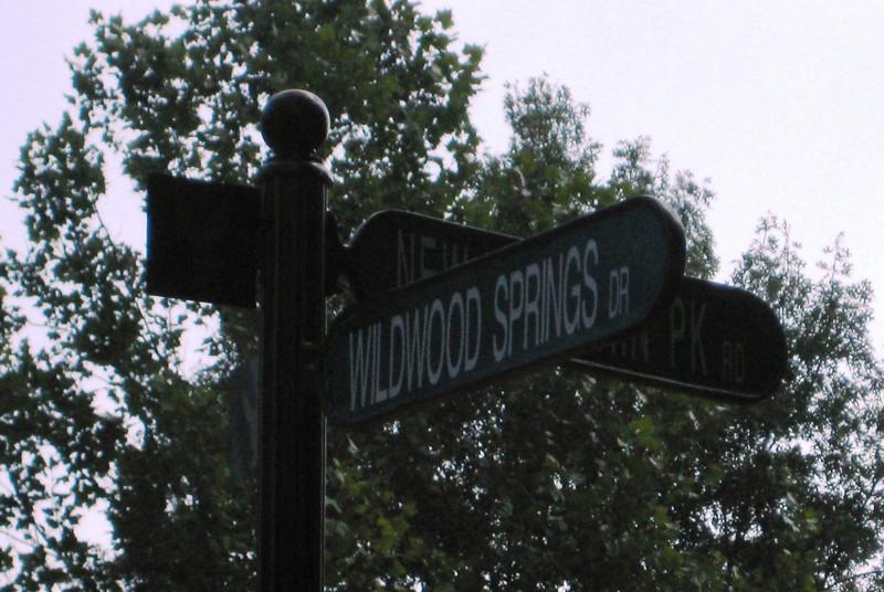 Wildwood Springs Along Mountain Park Road Roswell GA (7).JPG