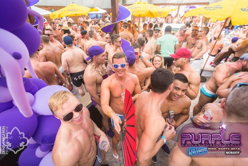 2014-05-10_purple06_718-3255139767-O.jpg