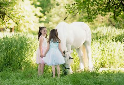 Tina Cunningham Unicorn