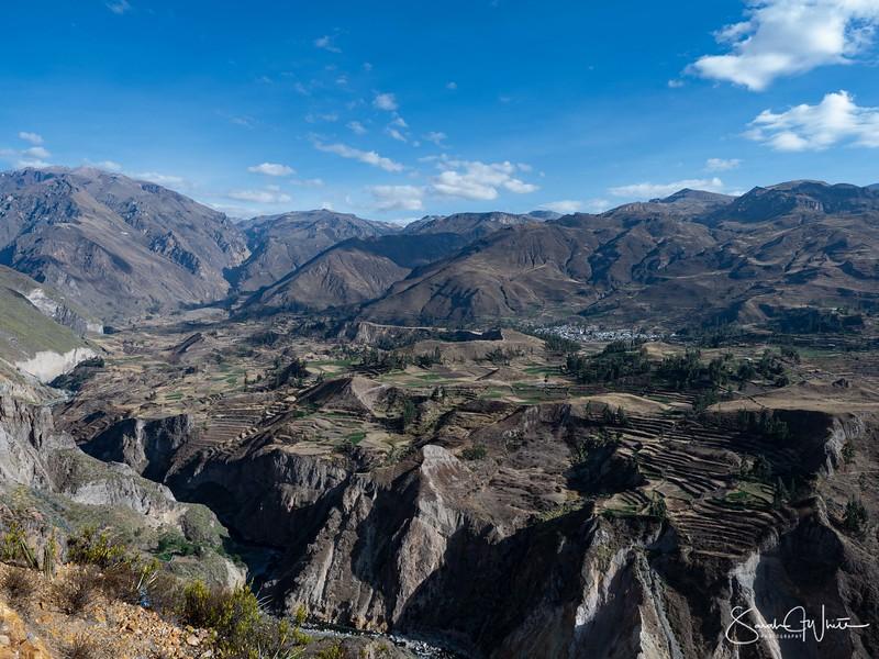 Peru-15102019-319.jpg