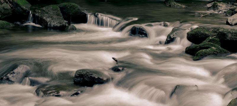 FRESH WATER   106