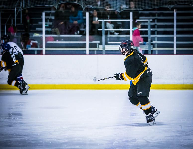 Bruins2-110.jpg