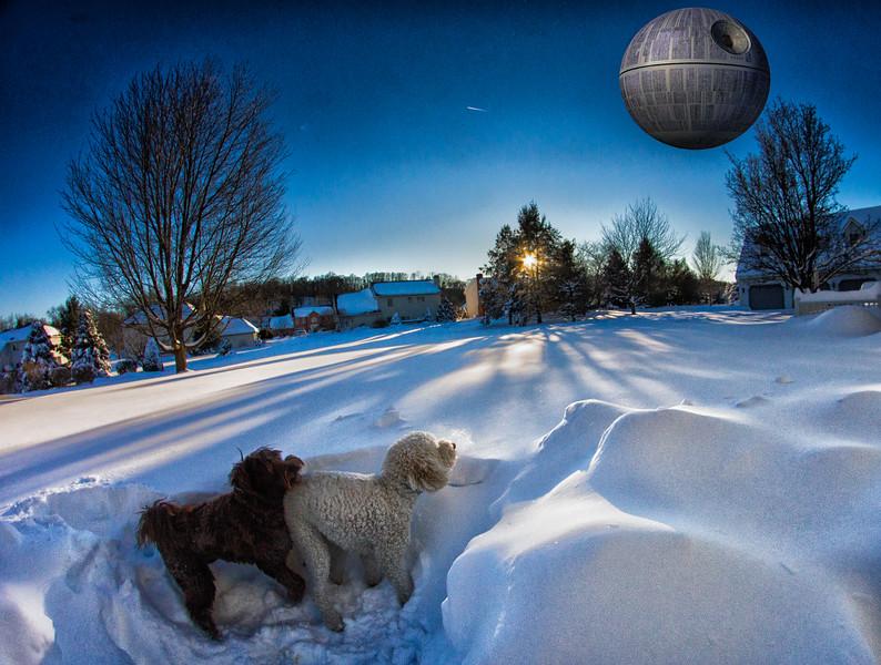 snowfall-03526-Edit-Edit.jpg