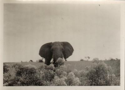 Uganda 1958-60