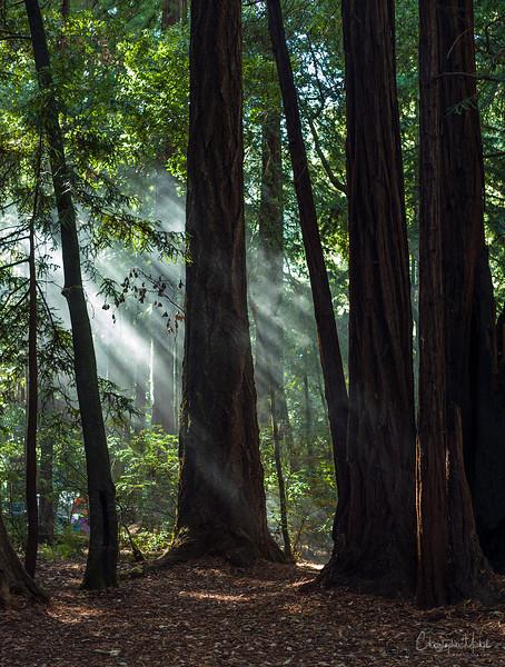 Oct052013_camping_0460.jpg