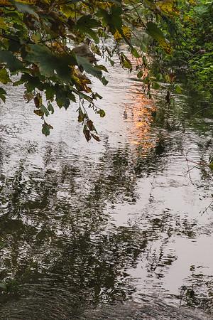 Forêt de Meerdaal