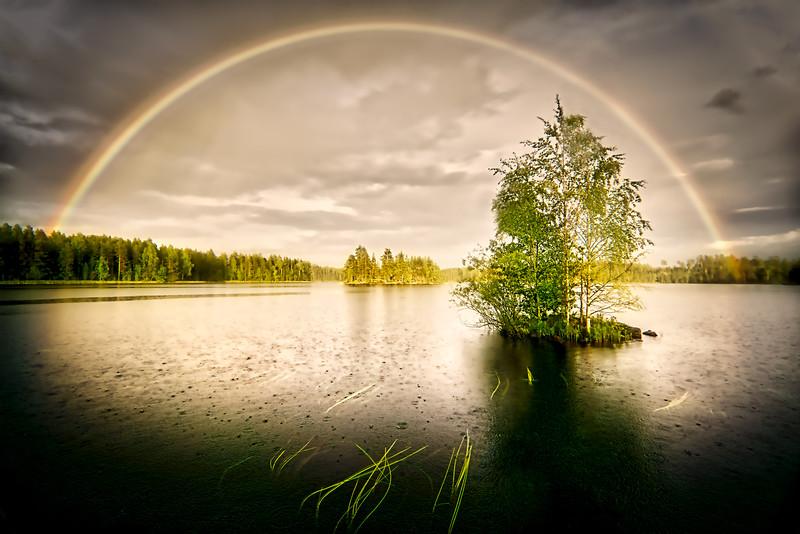 RainbowGrass.jpg