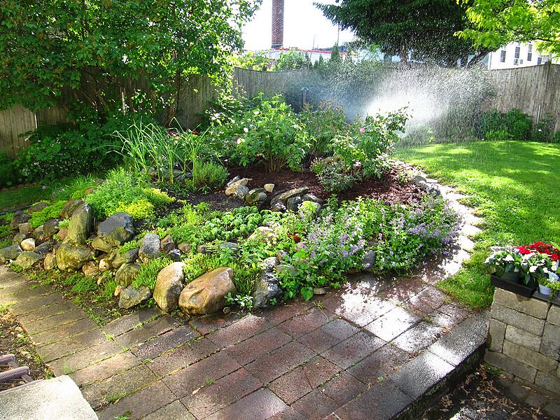 garden-2009-05-0664_std.jpg