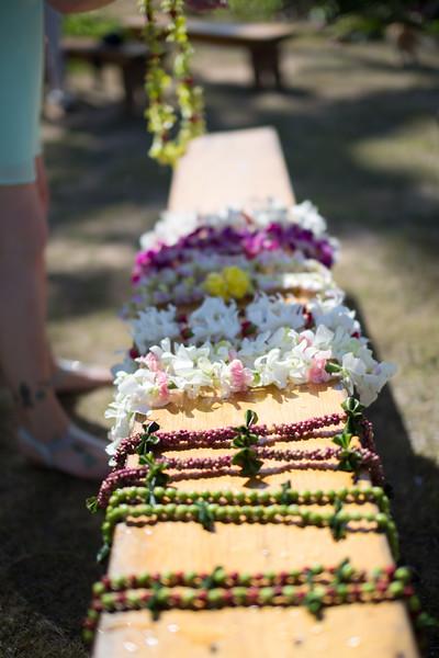 gillin beach kauai wedding-38.jpg
